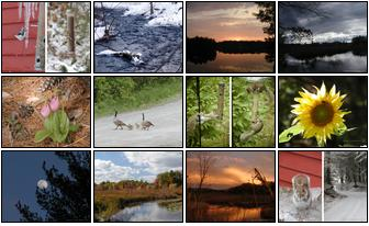 Small combination photos of 2004 Spectacle Pond Calendar